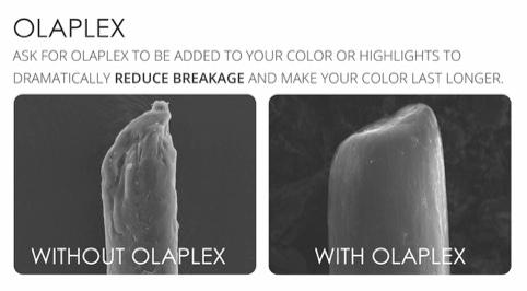 OLAPLEX - By Bianca